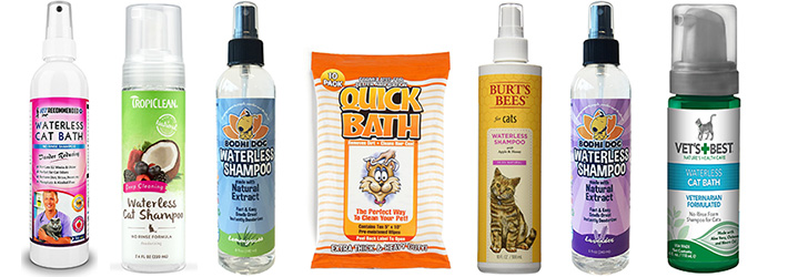 Best Dry Shampoo For Cats With Sensitive Skin